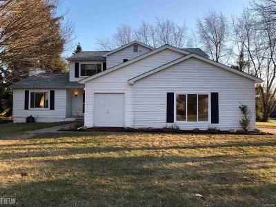 Rochester Single Family Home For Sale: 1835 N Fairview Ln