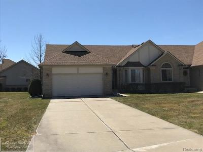 Chesterfield Twp Condo/Townhouse For Sale: 30120 Raintree