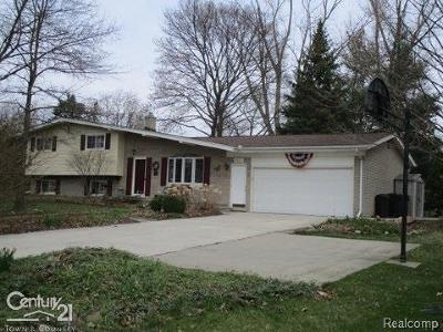 Shelby Twp Single Family Home For Sale: 2137 24 Mile Road