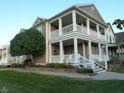 Harrison Twp Condo/Townhouse Contingent - Continue To Show: 29022 Thistle Lane
