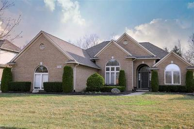 Shelby Twp Single Family Home For Sale: 53565 Desano Drive