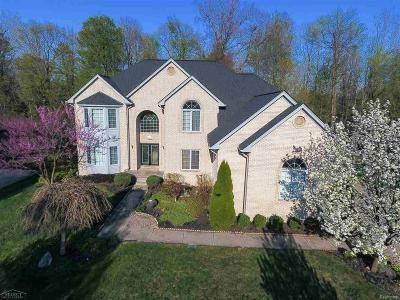 Shelby Twp Single Family Home For Sale: 50698 Otter Creek