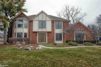 STERLING HEIGHTS Single Family Home For Sale: 4879 Lenomar Ct