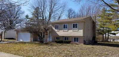 TROY Single Family Home For Sale: 3663 Forge Dr