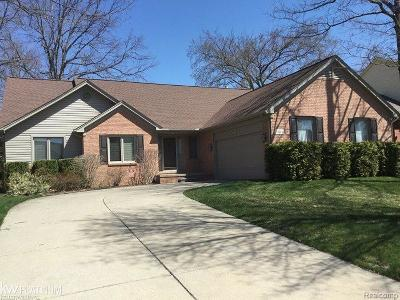 Rochester Hills Single Family Home For Sale: 1611 Mackwood Rd.
