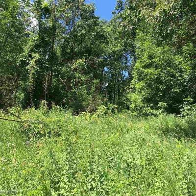 Oakland Twp Residential Lots & Land For Sale: Lake George