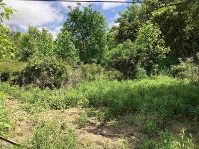 Armada Twp Residential Lots & Land For Sale: Capac