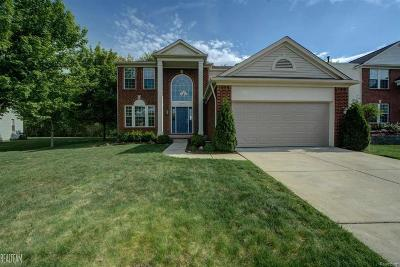 MACOMB Single Family Home For Sale: 18096 Bayside Dr.