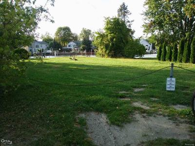 Harrison Twp Residential Lots & Land For Sale: 29325 S River