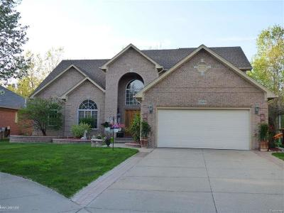 MACOMB Single Family Home For Sale: 21409 Wedge Dr