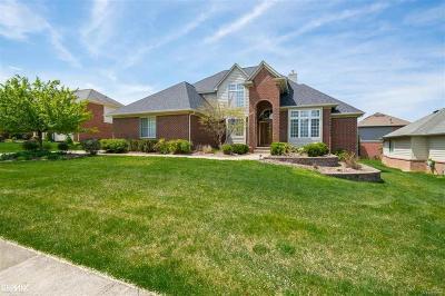 Auburn Hills Single Family Home For Sale: 3391 Paramount Ln