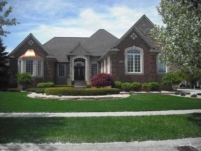 Washington Twp Single Family Home For Sale: 57523 Cider Dr