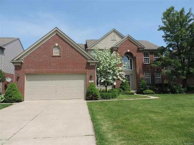 STERLING HEIGHTS Single Family Home For Sale: 34572 Giannetti