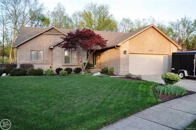 Macomb Twp Single Family Home For Sale: 53152 Abraham