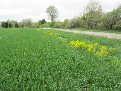 Bruce Twp Residential Lots & Land For Sale: 78955 Brown