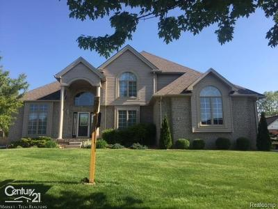Chesterfield Twp Single Family Home For Sale: 26695 Miela