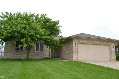 Sterling Heights Single Family Home For Sale: 4173 Chris