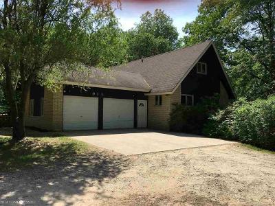 Ortonville Single Family Home For Sale: 911 Evergreen