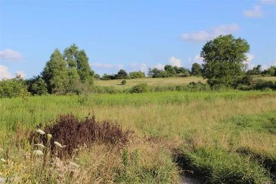 Addison Twp Residential Lots & Land For Sale: Mack Road, Parcel C