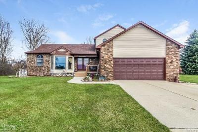 Sterling Heights Single Family Home For Sale: 4445 18 1/2 Mile
