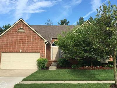 Auburn Hills Condo/Townhouse For Sale: 3811 Arbor