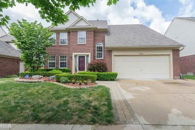Sterling Heights Single Family Home For Sale: 38273 Plumhollow Dr