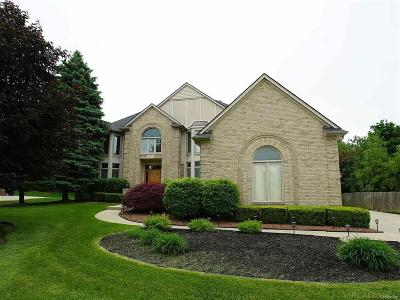 Rochester Hills Single Family Home For Sale: 3068 Eastpointe