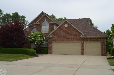 Clinton Twp Single Family Home For Sale: 19831 Woodview