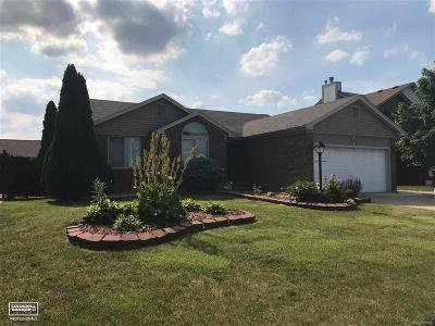 Chesterfield Twp Single Family Home For Sale: 46087 Prince Dr