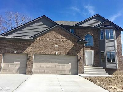 Chesterfield Twp Single Family Home For Sale: 50072 Oakbrooke
