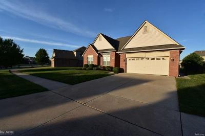 Macomb County Single Family Home For Sale: 46358 Sawyer Lane