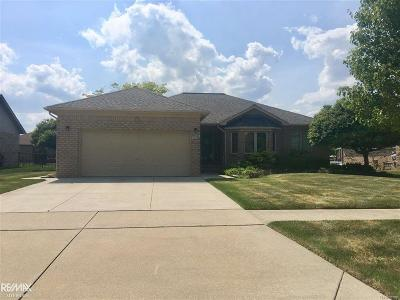 Macomb Twp Single Family Home For Sale: 47253 S Fork
