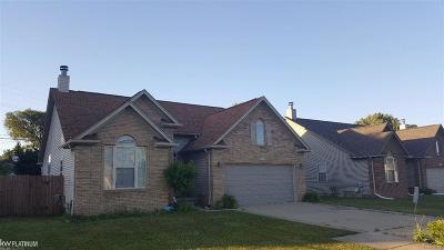 St Clair Shores, Roseville, Harrison Twp, Fraser Single Family Home For Sale: 18241 Blue Island