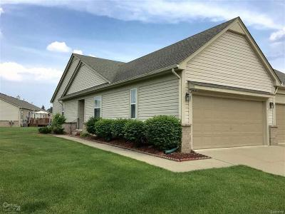 Sterling Heights Condo/Townhouse For Sale: 34145 Birchway Circle #16