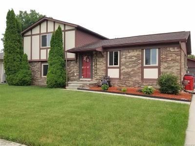 Clinton Twp Single Family Home For Sale: 17464 Koogler
