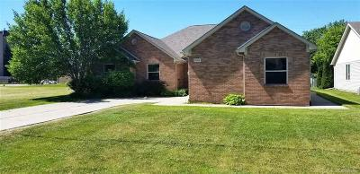 Harrison Twp Single Family Home For Sale: 25014 Trombley