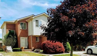 Chesterfield Twp Condo/Townhouse For Sale: 32897 Birchwood