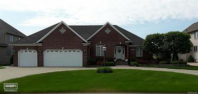 Chesterfield Twp Single Family Home For Sale: 49501 Compass Pointe Dr
