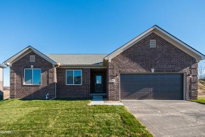 Clinton Twp Single Family Home For Sale: Dixie