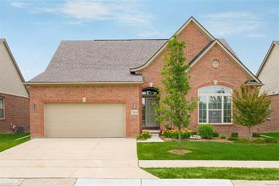 Macomb Twp Condo/Townhouse For Sale: 22624 Lynden Creek
