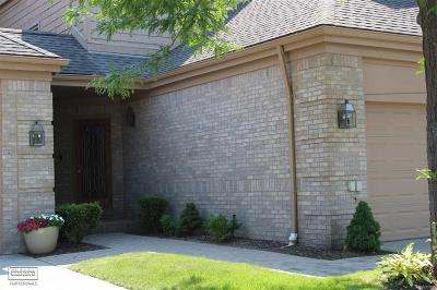Harrison Twp Condo/Townhouse For Sale: 26231 Harbour Pointe Dr. N #Unit 24,