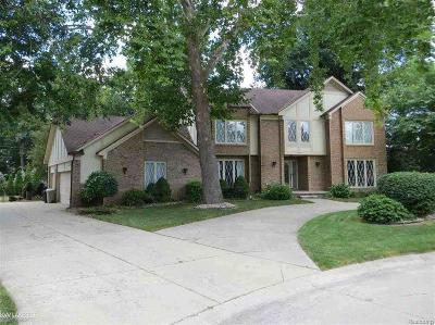 Clinton Twp Single Family Home For Sale: 18200 Nardy St