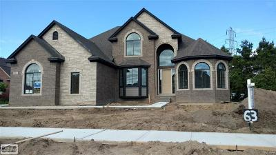 Shelby Twp Single Family Home For Sale: 54563 Preston Pines Lane #Lot #63