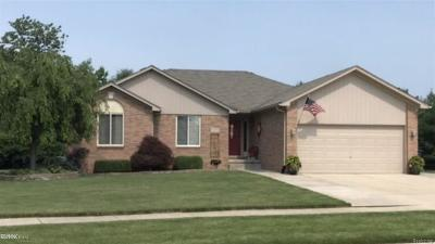 Chesterfield Twp Single Family Home For Sale: 53275 Joann Marie