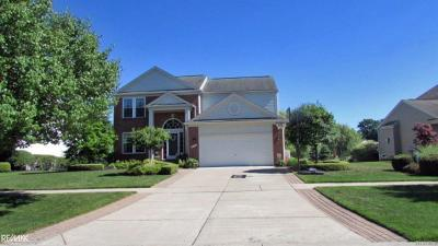 Macomb Twp Single Family Home For Sale: 18118 Country Club Dr
