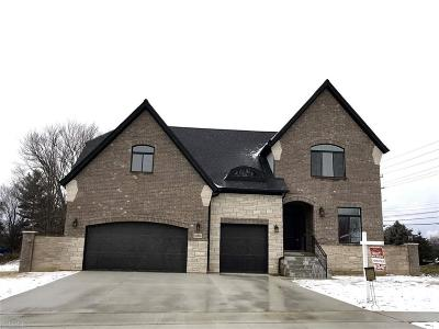 Shelby Twp Single Family Home For Sale: 48965 Pinebrook Drive