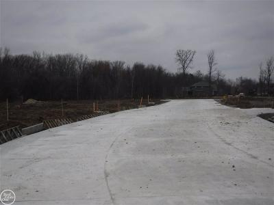 Macomb Twp Residential Lots & Land For Sale: 19296 Springbrook Drive