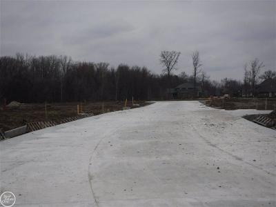 Macomb Twp Residential Lots & Land For Sale: 19251 Springbrook Drive