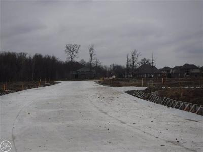 Macomb Twp Residential Lots & Land For Sale: 45679 Shoal Drive