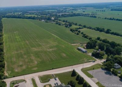 Ray Twp Residential Lots & Land For Sale: 16060 31 Mile